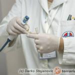 Diagnostyka kliniczna chorób jaszczurek