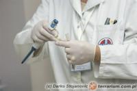 [Świat] Dzień Lekarza Weterynarii