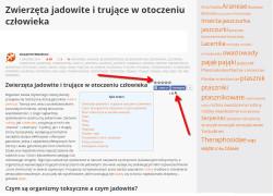 System oceniania i opcja powiększenia czcionki na terrarium.com.pl