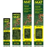 Moss Mat – podłoże w postaci maty z mchu