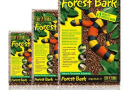 Forest Bark – naturalne podłoże do terrarium