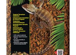 Coco Husk – podłoże do terrarium tropikalnego