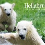 Tierpark Hellabrunn Zoo – Monachium – Niemcy