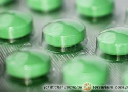 Najczęściej stosowane leki w terapii płazów