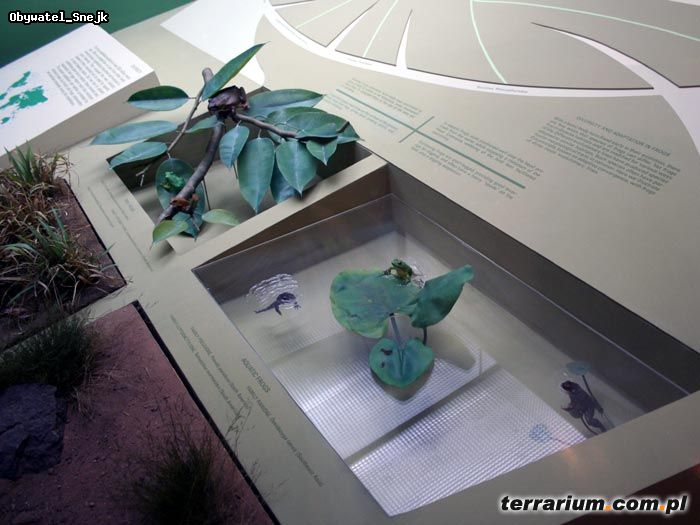 kolmården terrarium öppettider