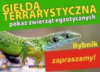 [Rybnik] Giełda Terrarystyczna w Rybniku i Pokaz Zwierząt Egzotycznych - GIEŁDA ODWOŁANA