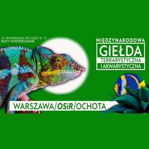 ✅ [Warszawa] Międzynarodowa giełda terrarystyczna Warszawa