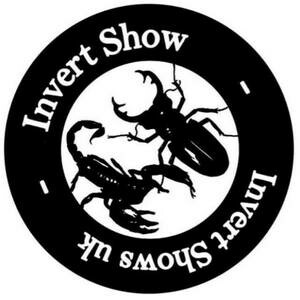 ✅ [Wielka Brytania - Bedford] Eastern Invert Show