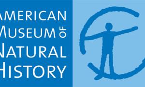 Amerykańskie Muzeum Historii Naturalnej – Nowy York – Stany Zjednoczone