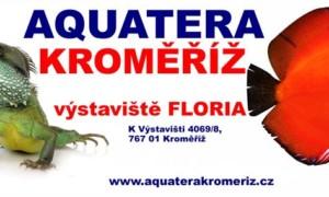✅ [Czechy – Kromieryż] Aquatera Kromeriz