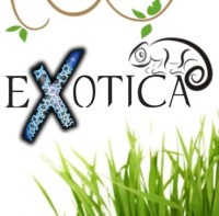[Szczecin] Exotica - Giełda zwierząt terrarystycznych
