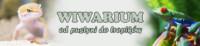 [Warszawa] Wiwarium - Warszawskie Targi Egzotyczne