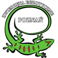 [Poznań] Świat Egzotyki - Giełda i Wystawa Zwierząt Egzotycznych w Poznaniu