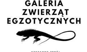 Giełda Szczawno-Zdrój
