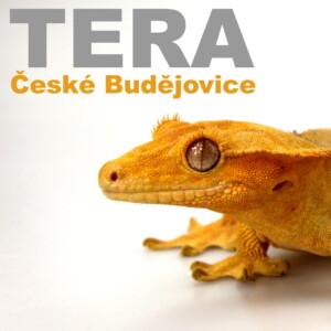 ✅ [Czechy - Ceske Budziejowice] TERA České Budějovice