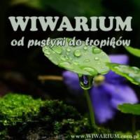 ❓❓❓ [Warszawa] Wiwarium - Od pustyni do tropików ❓❓❓