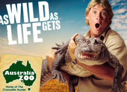 Australia Zoo – Beerwah – Australia