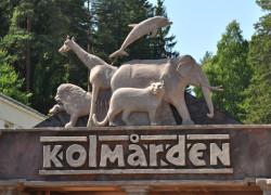 Kolmården Zoo – Szwecja