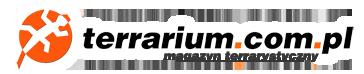 Terrarystyka terrarium