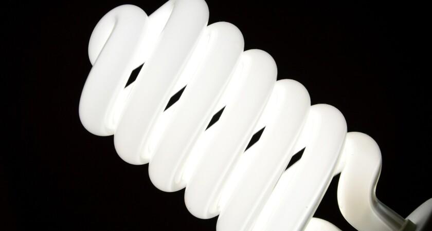 Oświetlenie w terrarium – Pytania